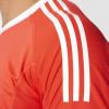Pánsky dres adidasPerformance REVIGO 17 GK - foto 5