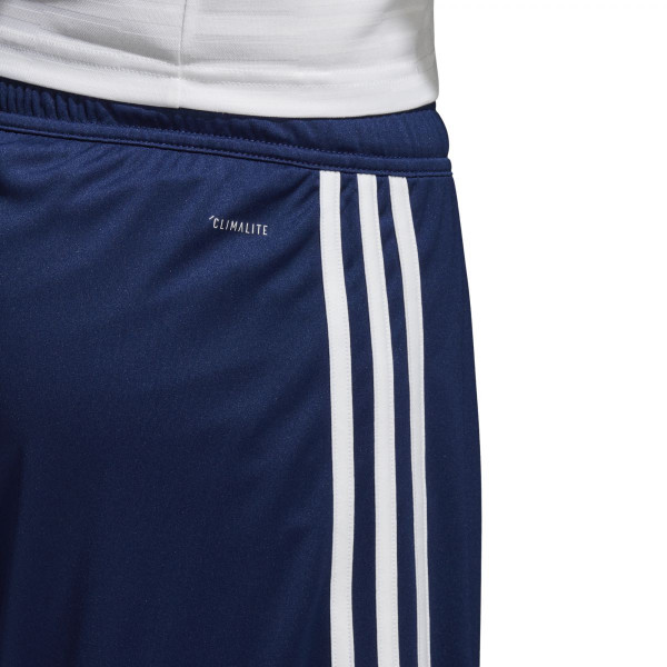Pánské šortky adidas Performance REGISTA 18 SHO  - foto 4